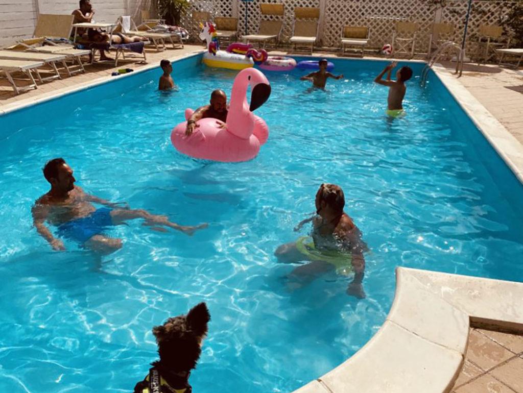 piscina hotel viking cagnolino e bambini lasabrigamer