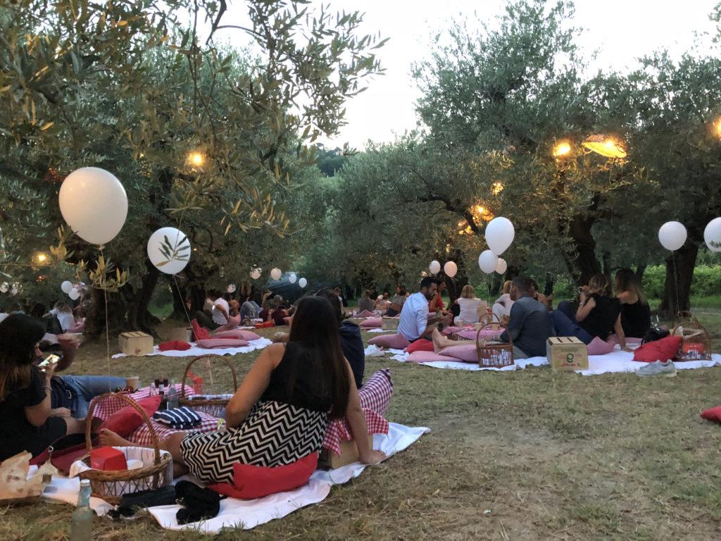 scamporella picnic fra gli ulivi
