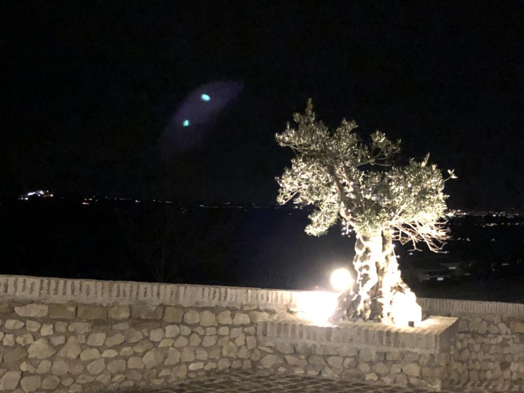olivo torriana illuminato vista su valle