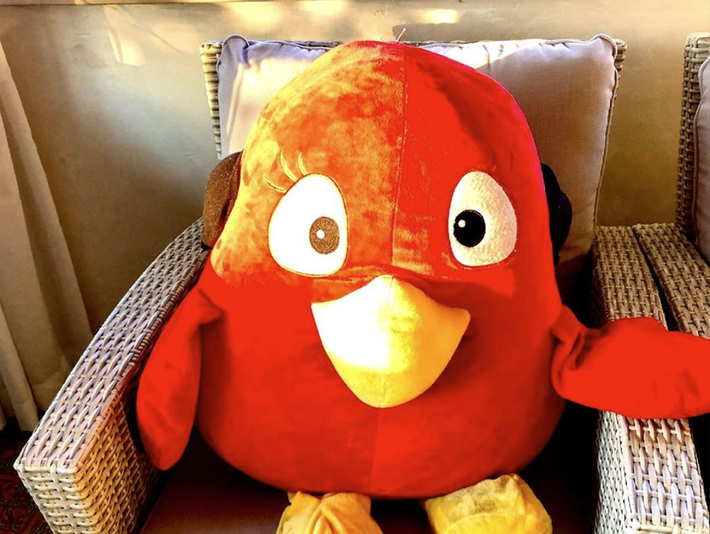 angry birds uccellino rosso mascotte